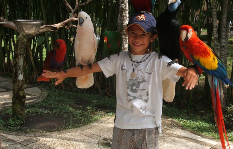 Kinder und Relax Bali Resort - extra Preisen
