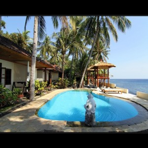 Relax Bali resort - part Monkey