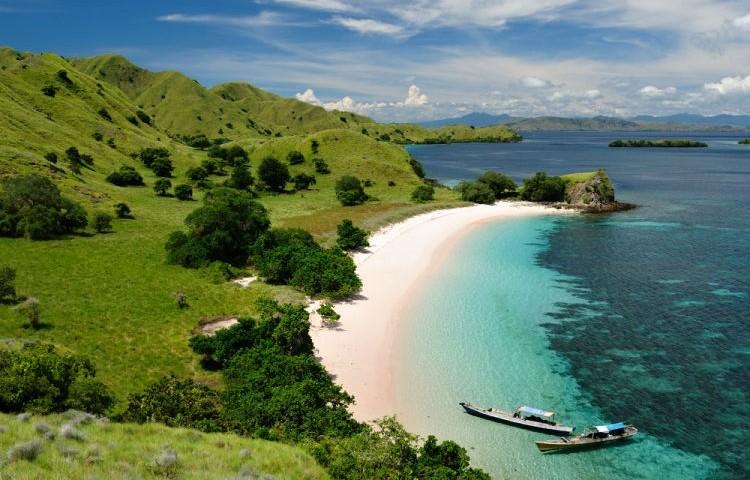 Komodo plaz
