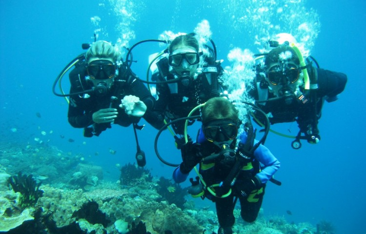 diving courses for the whole family