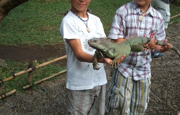 Bali 2010 096