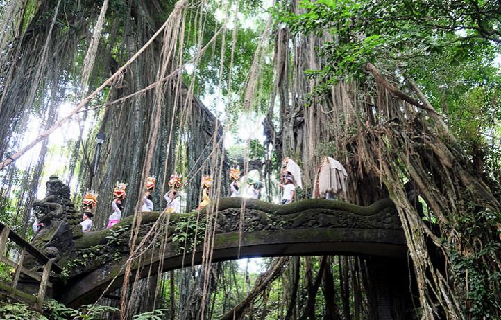 Monkey forest, Ubud s Relax Bali